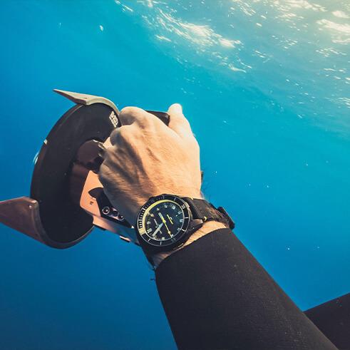 Diver 42mm Lemon Shark
