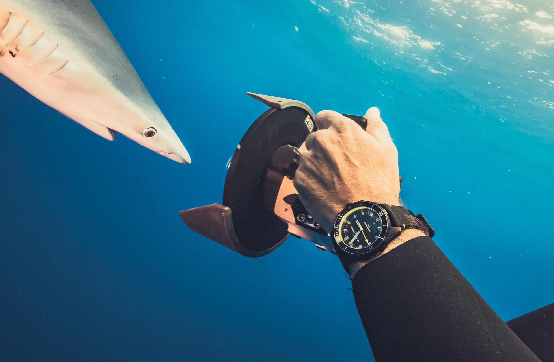 Diver 42mm Lemonshark